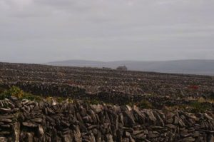 Drystone walls on Inisheer